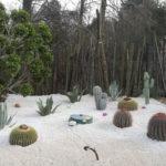restyling giardino