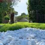 progettazione giardini roma