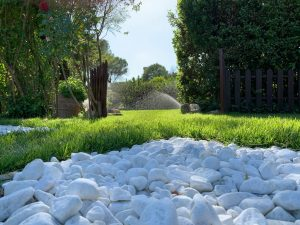 Impianti di irrigazione Roma